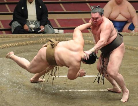 فيروس «كورونا» يصيب 19 مصارع سومو في اليابان