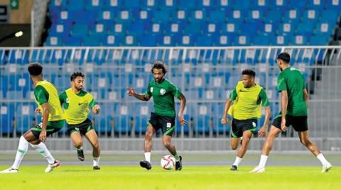 جنوب أفريقيا ورومانيا تجهزان الأخضر للأولمبياد